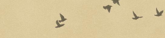 Schermata 2014-02-26 alle 16.58.05